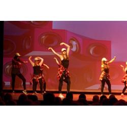 Danse Niveau 3 (13 ans et +)