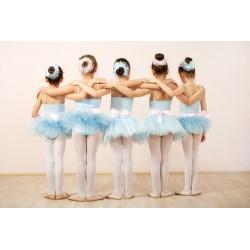 Danse Classique Eveil 1 (1ère mat)