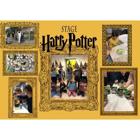 Kids : Harry Potter, Mystère à Poudlard